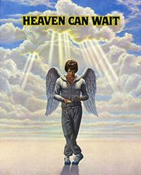 walk-in-reincarnation-research-heaven-can-wait